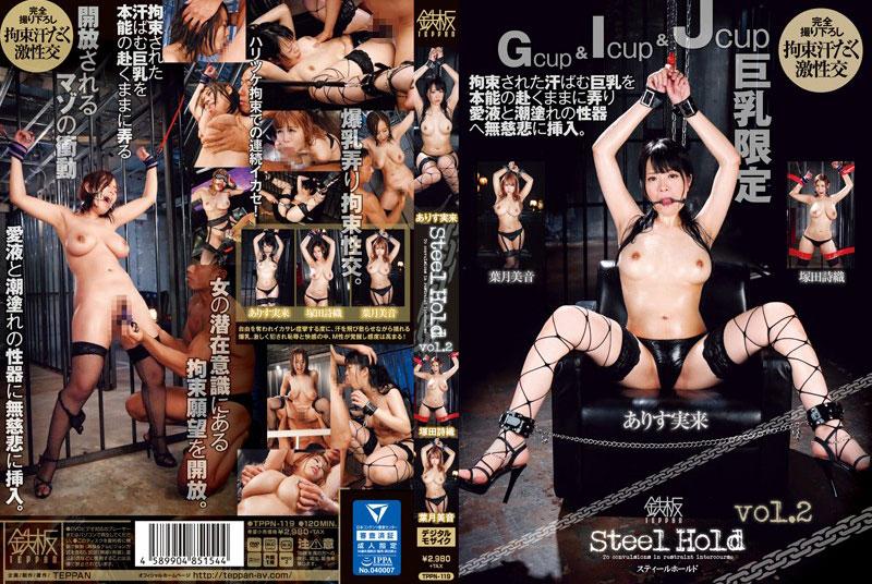 Steel Hold vol.2のパッケージ画像